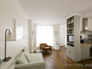 Living Room View One  - Saint Germain Chic One Bedroom - Paris - rentals