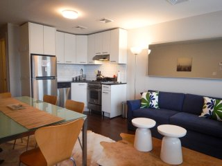 Modern luxury 2 bedroom apartment - Brooklyn vacation rentals