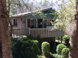 Charming 3 Bedroom cabin nestled among the trees. - Franklin vacation rentals