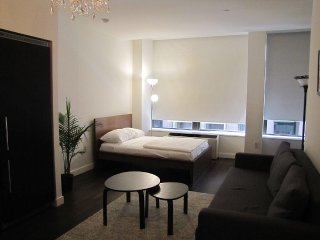 Luxury Fully Furnished Financial District Studio - New York City vacation rentals