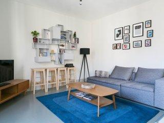 Domino Number 43 - 2BR Central Flat - Geneva vacation rentals