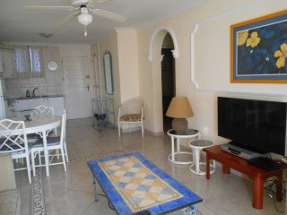 Beautiful apartment in Parque Santiago 2 - Playa de las Americas vacation rentals