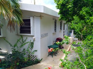 Papaya 2: Walking distance to Cruz Bay! - Cruz Bay vacation rentals