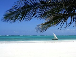 Villa Africa with private beach - Kwale vacation rentals