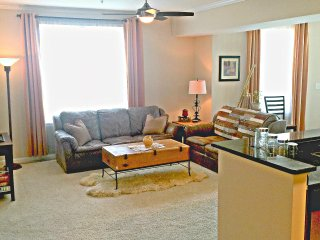 Luxury 2BR/2B, best place to stay in Raleigh - Raleigh vacation rentals