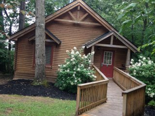 Need a Deluxe Cabin Villa for Graduation May 18-25 - Gordonsville vacation rentals