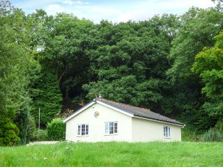 SUNNYSIDE LODGE, romantic retreat with hot tub, all ground floor, woodburner, nr Aberdare, Ref 941276 - Aberdare vacation rentals