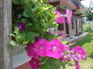 nature front guest house, sedibagar-26, pokhara - Pokhara vacation rentals