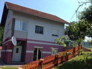 Haus Viktoria - Somewhere Special - Laktasi vacation rentals