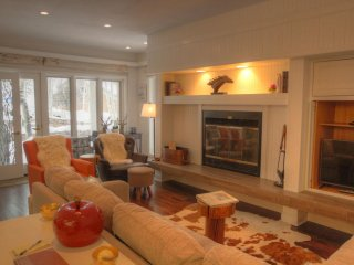 Wonderful Condo with Internet Access and Hot Tub - Keystone vacation rentals
