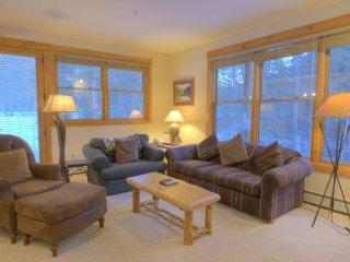 Charming 2 bedroom Condo in Keystone with Internet Access - Keystone vacation rentals
