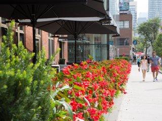 Saint Julian Suites - Downtown Core - Toronto vacation rentals