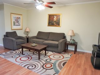 Sweet Summer Special! Houston Galleria Area!!! - Houston vacation rentals