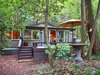 Perfect Cabin with Deck and Internet Access - Guerneville vacation rentals