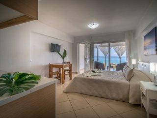 Playa Del Zante - Palm Studio with Sea View - Meso Gerakari vacation rentals
