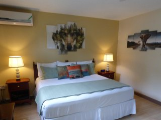 Beautiful Studio with Internet Access and A/C - Ocho Rios vacation rentals