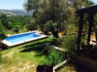 Enchanting cottage with private pool near Ronda - Ronda vacation rentals