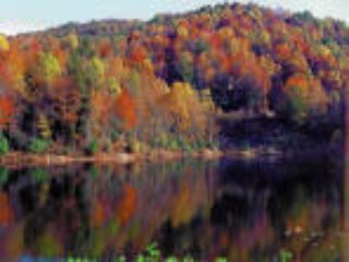 Newly Listed Special - WALK TO SLOPES - Beech Mountain vacation rentals