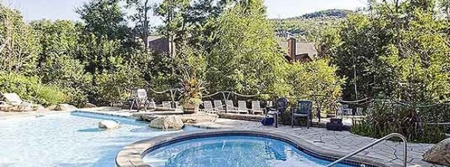 Cozy 1 bedroom Condo in Mont Tremblant with Internet Access - Mont Tremblant vacation rentals