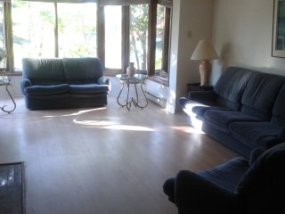 Furnished luxury condo 4 bd, 3 ba, spa like facilities, parking available - Ottawa vacation rentals
