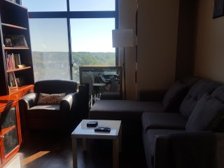 Nice Condo with Internet Access and A/C - Silver Spring vacation rentals