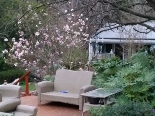 Beautiful 1 bedroom Bed and Breakfast in Bowral - Bowral vacation rentals