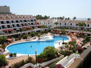 2 bedroom Condo with Internet Access in Playa de las Americas - Playa de las Americas vacation rentals