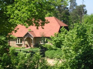 Spacious cottage in idyllic woodland setting - Graffham vacation rentals