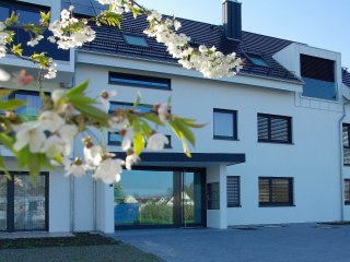 Nice Condo with Internet Access and Wireless Internet - Wasserburg am Bodensee vacation rentals