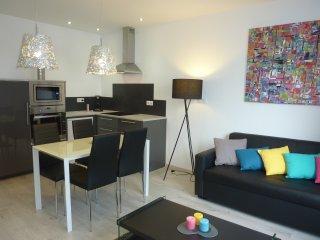 L'Appart Thermal meublé design à 250m des Thermes - Vittel vacation rentals