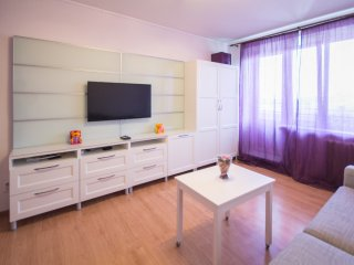 Tretiakov Galllery apartment - Moscow vacation rentals