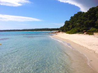 Appartements de luxe en bord de mer - Pinarellu vacation rentals