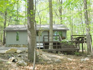Perfect House with Television and DVD Player - Berkeley Springs vacation rentals