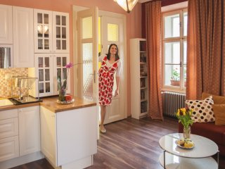Tour guide managed, 9 ppl, central, quiet, luxury - Prague vacation rentals
