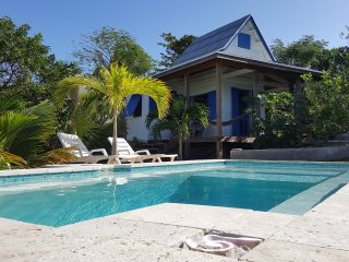 Tamarind Tree, Waterfront w/Pool,  #1 Lonely Plane - Gregory Town vacation rentals