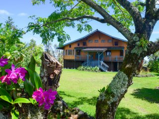 Gorgeous House with Internet Access and Wireless Internet - Pahoa vacation rentals