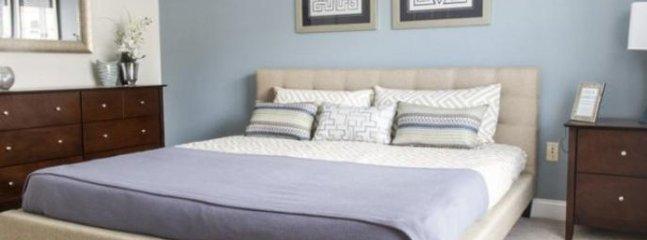 Furnished 2-Bedroom Apartment at Littleton Rd & Princeton Way Westford - Westford vacation rentals
