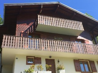 Big chalet on an amazing location close to centre - Chatel vacation rentals