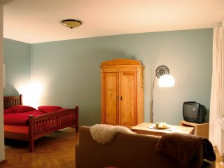 Cozy 1 bedroom Condo in Dresden with Internet Access - Dresden vacation rentals