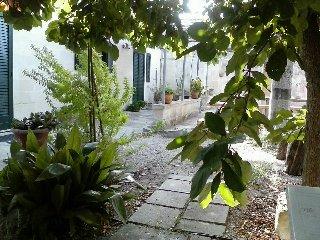 Bright 2 bedroom House in San Cesario di Lecce with Television - San Cesario di Lecce vacation rentals