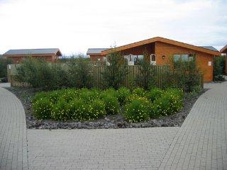 Romantic 1 bedroom House in Selfoss - Selfoss vacation rentals