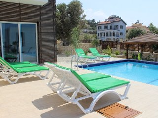 Luxury house 5 bedrooms (up to 10 people)  seaview - Ayios Amvrosios vacation rentals