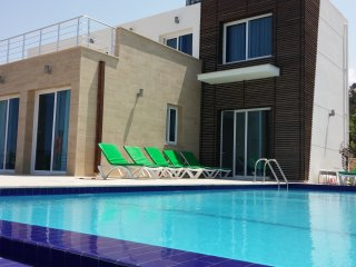Eden Villa 5 (up to 10 people)  seaview - Ayios Amvrosios vacation rentals