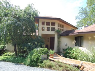 Mountain home in rural Cville_close to breweries - Afton vacation rentals