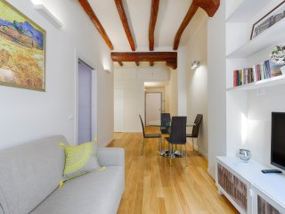 Newly restored apartment in the center of Bologna - Bologna vacation rentals