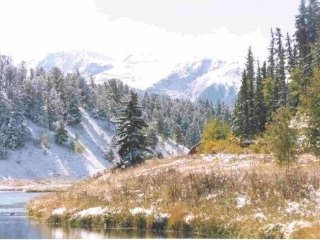 lake, hot tub, views, fire wood n no pet fees! - Woodland Park vacation rentals