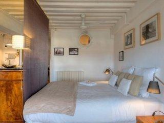 COOL CITY-LOFT GAILLETON - Lyon vacation rentals