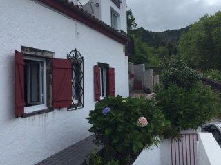 Cozy 2 bedroom House in Furnas - Furnas vacation rentals