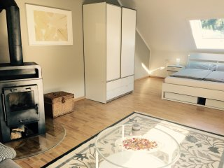 Schickes 3-Raum Appartment mit Kaminofen - Ilmenau vacation rentals