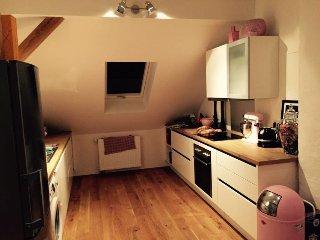 Design Apartment / Loft City / Messe - Hannover vacation rentals